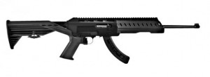 Slide Fire 10 22 Stock SSAR-22 www.rimfireworld.com