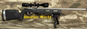 CLARK CUSTOM RUGER 10 22 Rimfire World