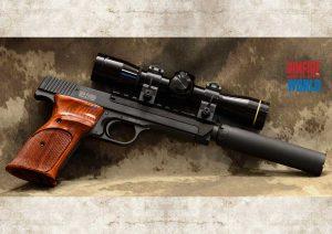 Clark Custom Smith&Wesson Model 41