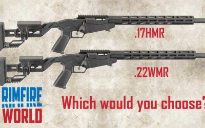 RUGER PRECISION RIMFIRE 17 HMR VS 22 WMR